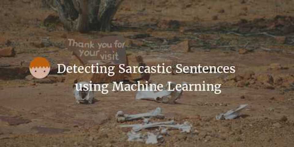 Sarcasm Detection